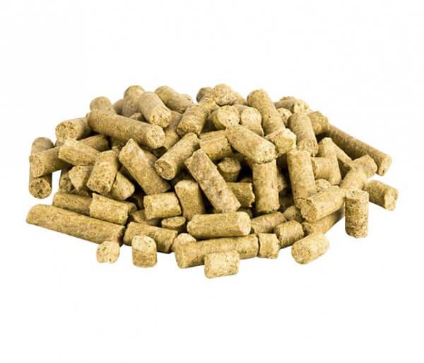 Das erste kaltgepresste, glutenfreie Trockenfutter für Hunde