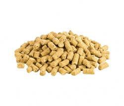 Kaltgepresstes, veganes Trockenfutter für Hunde ohne Gluten und Zucker